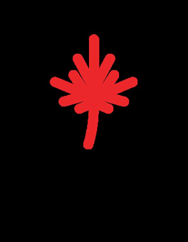 SeneCan Connect logo