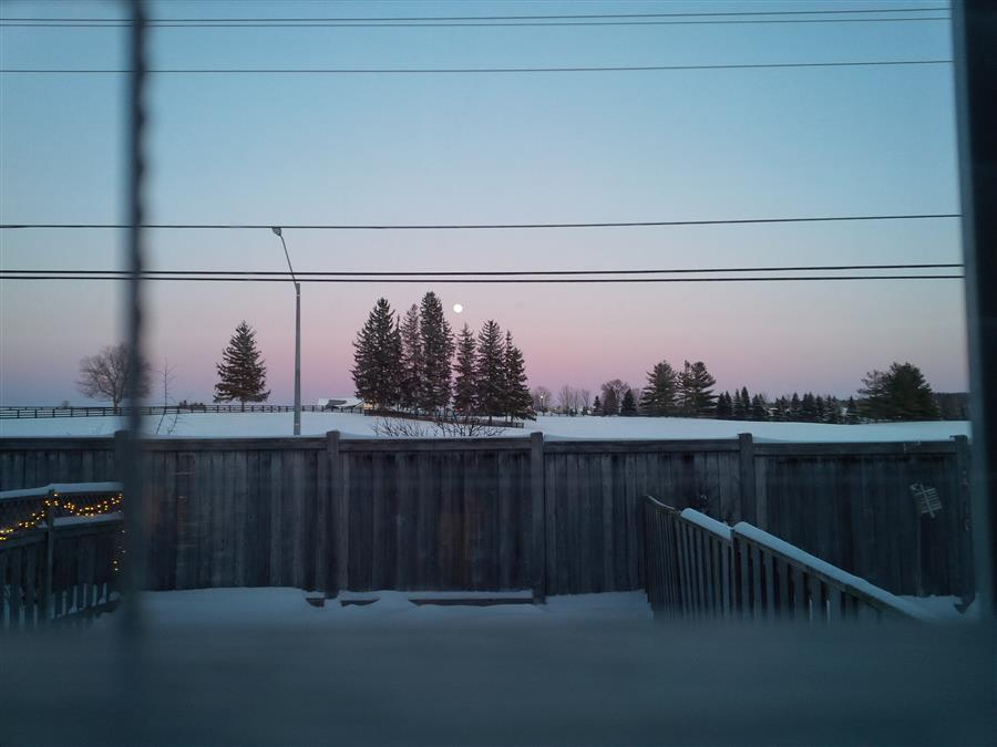 The Morning Moon