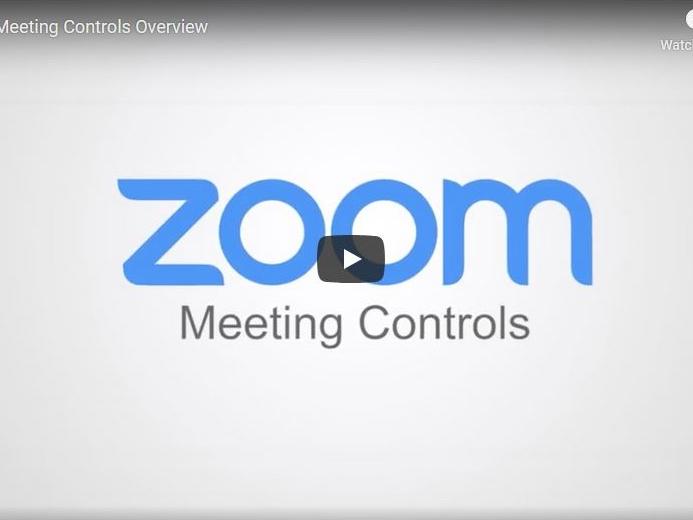 Meeting Controls